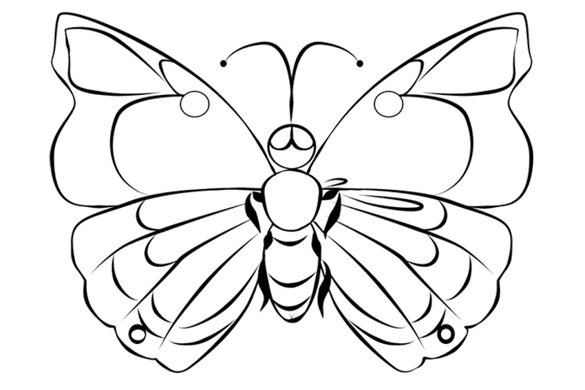 list of beautiful caterpillar and butterfly coloring pages - Pictures That You Can Color