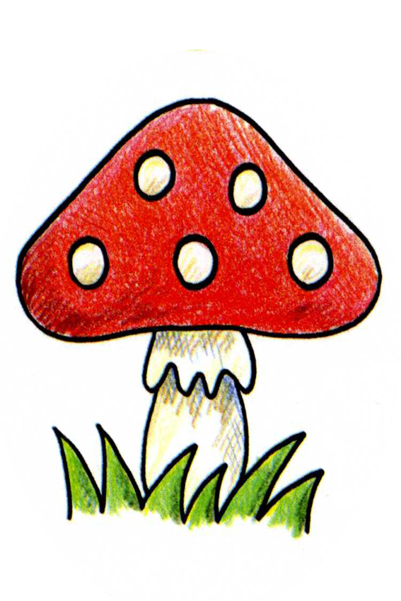 Gallery For gt Gnomes And Mushrooms Drawings