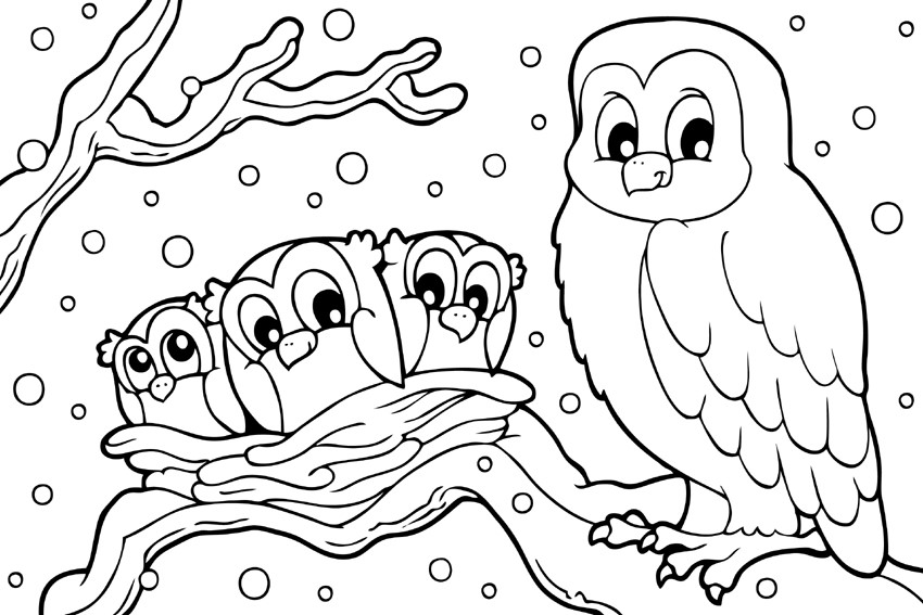 frozen owls in the snow categoriescoloring pages seasons winter