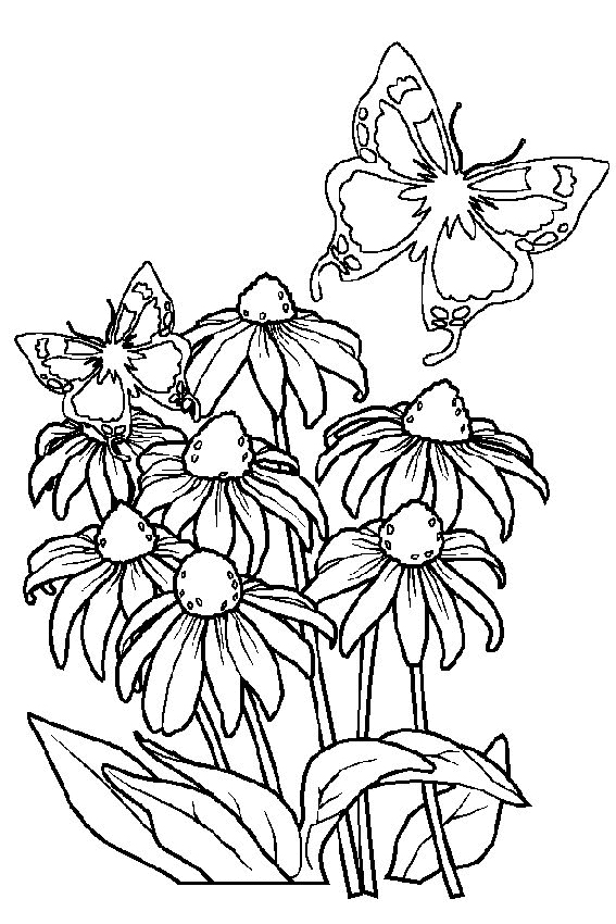spring coloring pages mandala butterflies coloring page