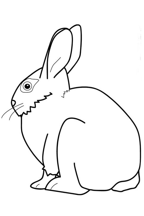 its happy bunny coloring pages - photo#9
