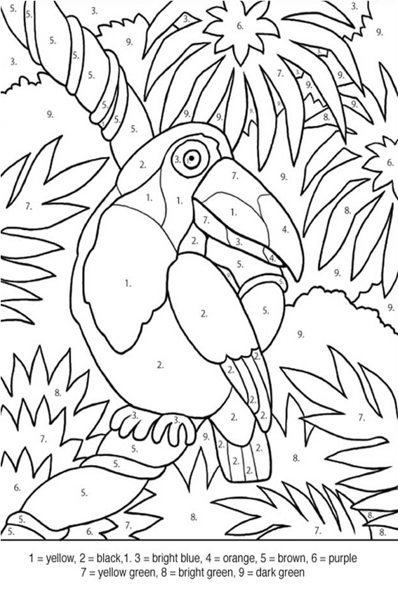 Tropical World A Coloring Book Adventure A Millie