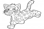 Coloring sheet from baby Jaguar