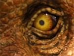 Big dinosaur eye