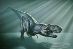 Dinosaur pictures 008