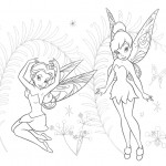 Tinkerbell and Rosetta