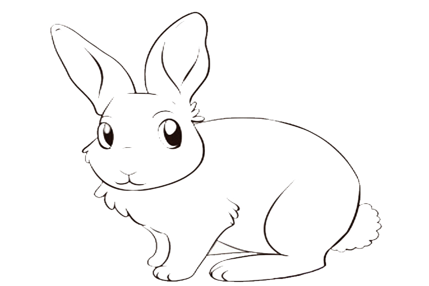 Color In A Bunny Coloring Page In Stead Of Buying Some Pets