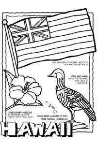 Hawaii flower bird and flag