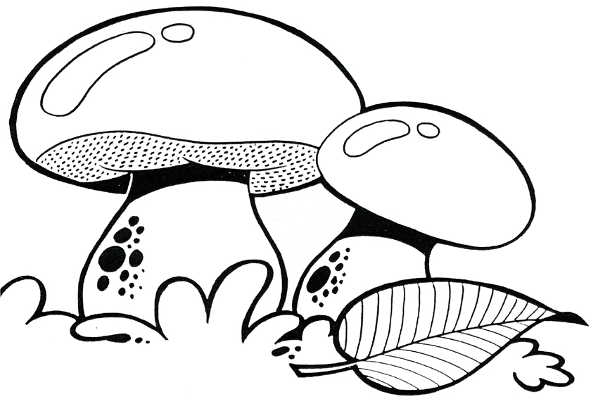 Autumn Coloring Pages Mushroom Page