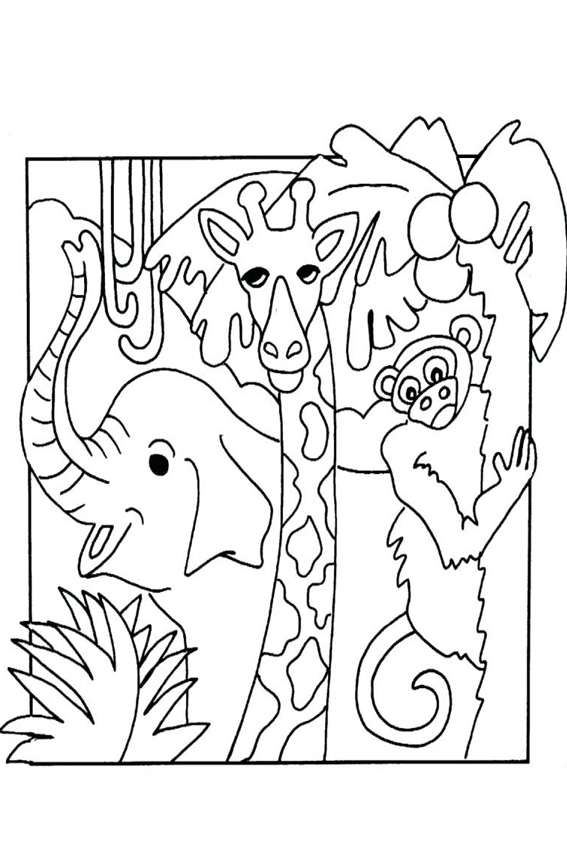 jungle coloring page