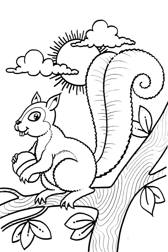 coloring page squirrel - autumn coloring pages to color in when it 39 s wet outside